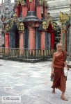 A monk in Shwedagon