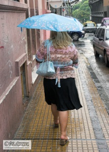 The umbrella, handbag and cardigan sharing the same shade of Columbia blue. - Argentina 2007