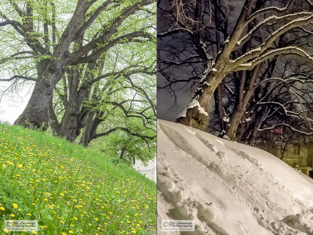 tallinna spring and winter 2