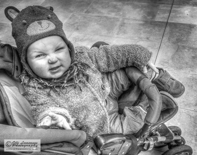 Karhunpentu kärryissä - A bear cub in a baby carriage (b&w hdr image)
