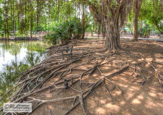 Kanchanaphisek Park, Nonthaburi, Thailand