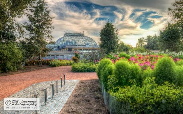 Kaisaniemi Botanic Garden, Helsinki, August 21, 2013