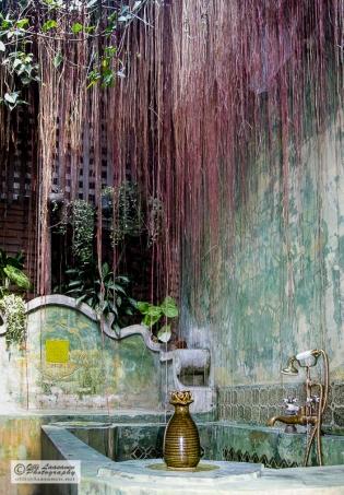 A bathroom like a rainforest. Bangkok, Thailand.