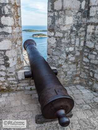 Cannons were protecting the fort.