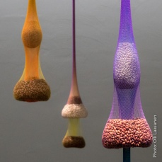 "Ernesto Neto: ""Variation on Color Seed Space Time Love"" (2009)"